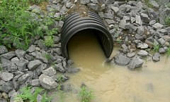 Report Construction Stormwater Violations