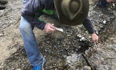 Water Monitoring on Puget Creek